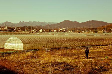 年末年始は高崎へ